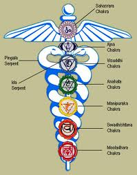 Caduceus, symbol of medicine, with the energy centers or chakras of the body.