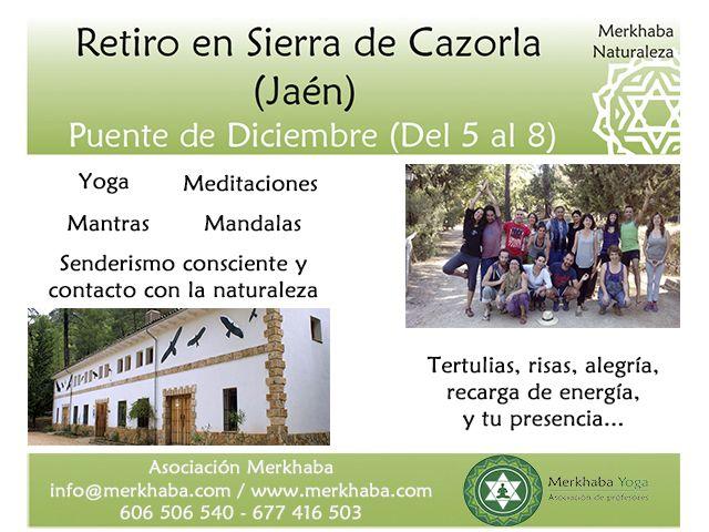 Puente-de-Diciembre-en-Sierra-de-Cazorla-2014