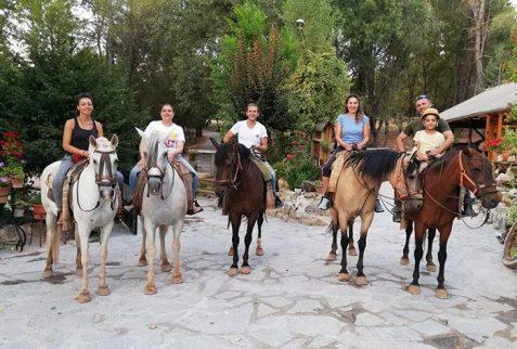 yogaventura-paseos-a-caballo
